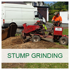 Basic Arbor Stump Grinding